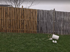Fence Cleaning Service