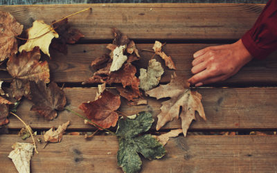 Complete Fall Deck Maintenance Checklist